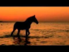 любэ-конь скачать минус